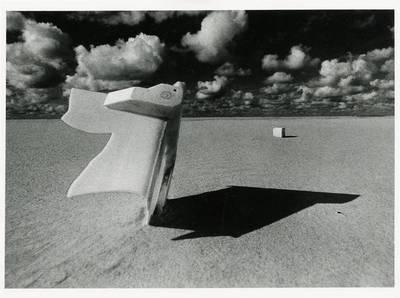 Virgilijus Šonta. Baltas plastikas. 1979