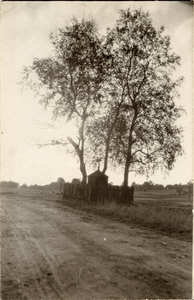 Rinkinys Adomo Varno fotorinkinys : Koplytėlė, 1881 /Adomas Varnas. - 1927