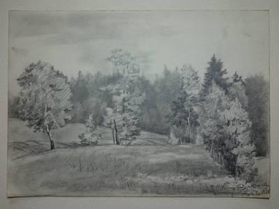 """Genovaitė Jacėnaitė. Piešinys """"Beržoras"""". 1956-06-18"""