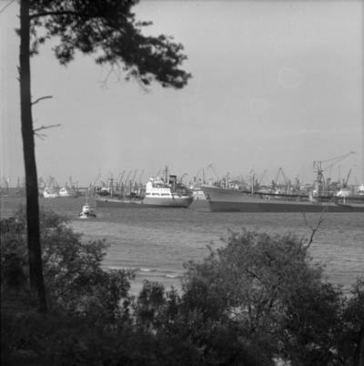 Bernardas Aleknavičius. Laivai Klaipėdos jūrų prekybos uosto reide. 1976