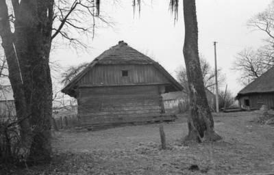 "Algirdas Kubilius. Fotonegatyvas ""Klėtis"". 1966-08-19"