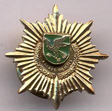 Pagėgių garbės piliečio medalio miniatiūra. 2013