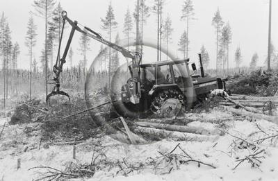 Pika 45-prosessori ja Hakki Souvari 3000A-kuormain puunkorjuussa. Volvo BM Valmet 805-metsätraktori.