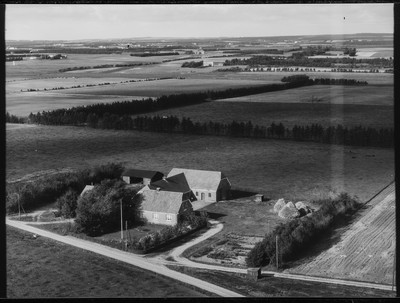 Aalborg Luftfoto - 1960