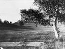 Korsvika ca. 1900