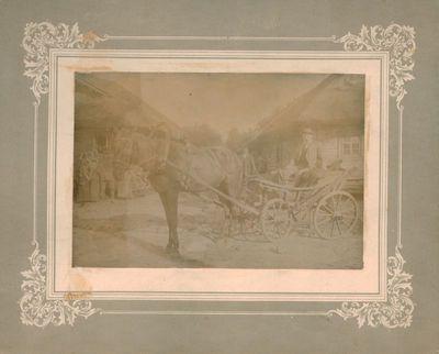 Nuotrauka. Vežimas su įkinkytu arkliu