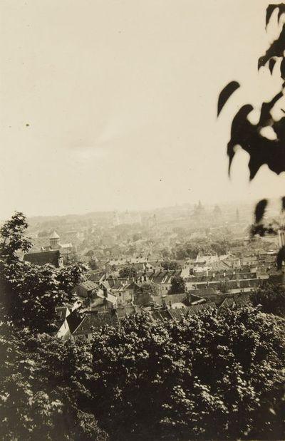 """Nuotrauka """"Vilniaus miesto panorama"""""""