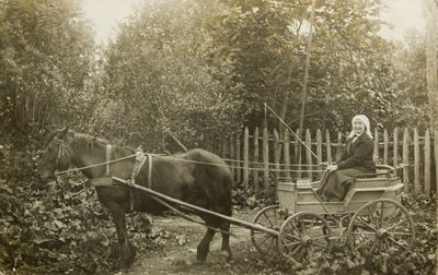 """Nuotrauka """"Jauniškės dvaro savininkė važiuoja su valstietišku išeiginiu vežimu"""""""