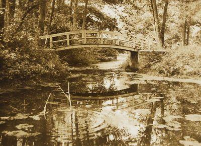 """Nuotrauka """"Tiltelis Palangos parke"""""""