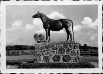 Bronzinė trakėnų veislės žirgo skulptūra Įsruties hipodrome