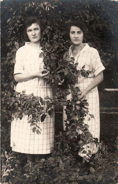 Dvi moterys sode prie obels