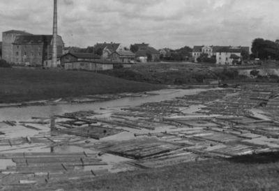 Klaipėda. Plukdoma mediena Dangės upe apdirbimo įmonėms