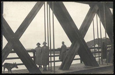 Žmonės ir šuo ant Kauno geležinkelio tilto