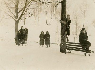 Žiema Bernardinų sode