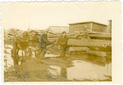 Politiniai kaliniai veža medieną į šachtą