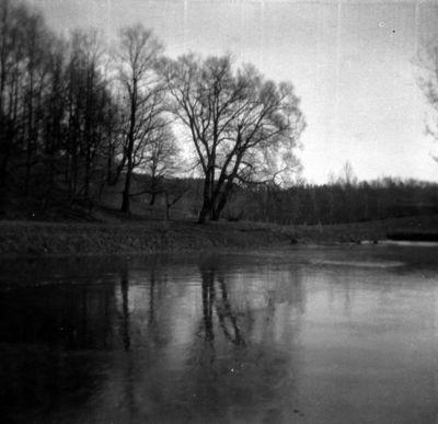Gamtovaizdis buvusioje Varvaros (1855–1935) ir Grigorijaus (1835–1905) Puškinų Markučių dvaro sodyboje