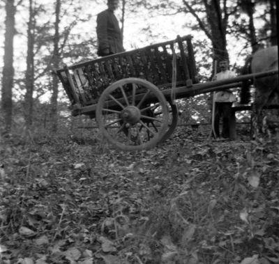 Ūkinės veiklos vaizdas buvusioje Markučių dvaro sodyboje