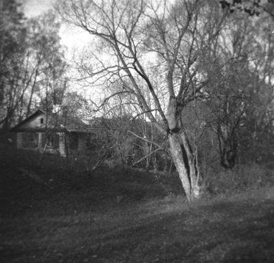 Buvusios Markučių dvaro sodybos kraštovaizdis