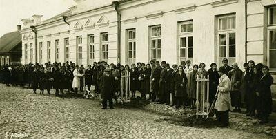 Medelių sodinimas prie Juzefo Pilsudskio gimnazijos. Dabar Zigmo Žemaičio gimnazija