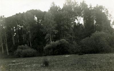 Apuolės piliakalnis