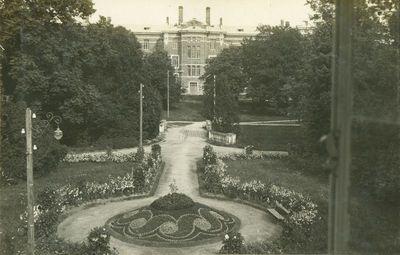 Reginys į Akademijos rūmus iš Rektorato