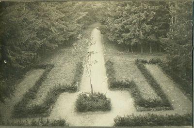 Vilniaus ąžuolas, pasodintas 1924-05-01