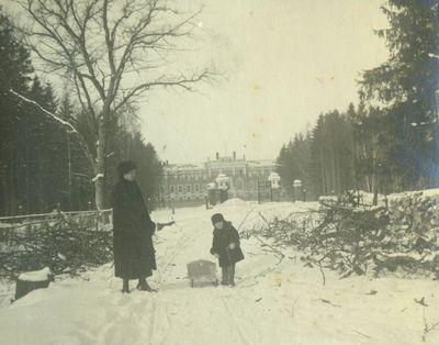 Parke žiemą