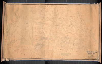 Burgerliche Grunde, Gegen Skurnian und der Haide aufgenomen und verfertigt 1781 Anton Gruber k.k. Ingenieur