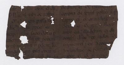 Matteusar guðspjall, 1300-1399