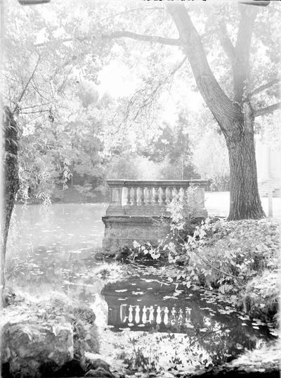 Omnia Estanques De Jardín