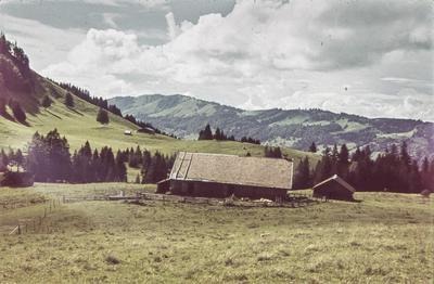 [Vista de una casa de tejado a dos aguas protegida por una cerca en la ladera de una montaña rodeada de árboles]