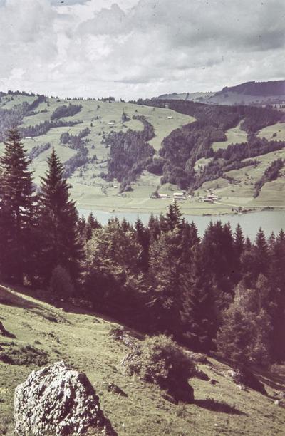 [Vista de un lago entre los árboles con montañas al fondo y casas diseminadas por las laderas]