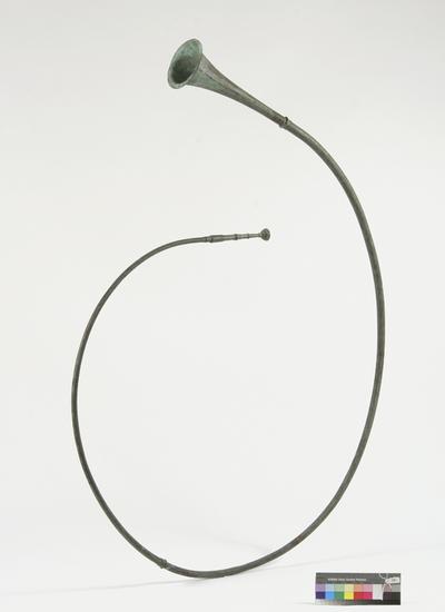 tuba curva
