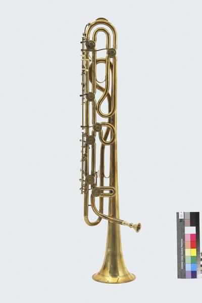 bimbonifono