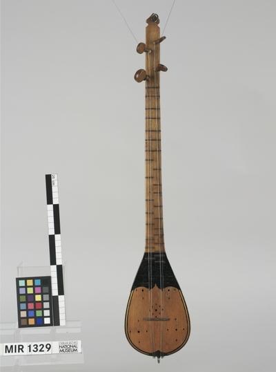 Tamburice, Bisernice (Mischwirbellaute)