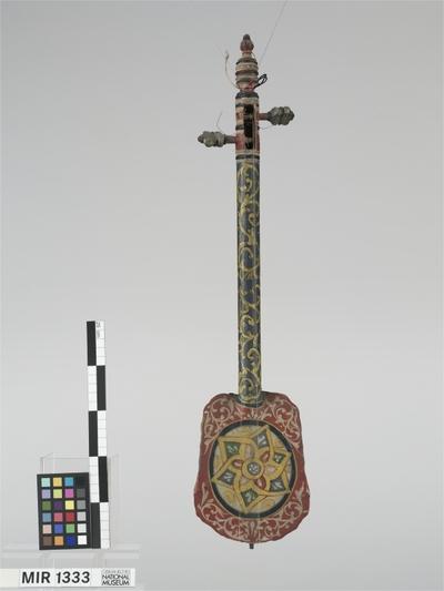 Gunibri (Flankenwirblige Spießlaute)