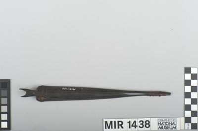 Idioglotte Rübenmaultrommel