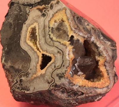 Mineralneubildungen in Ammonitenkammern