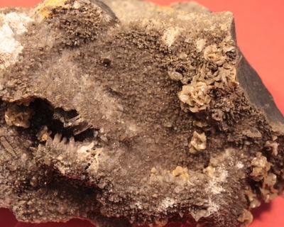 Baryt (BaSO4) in Geoden