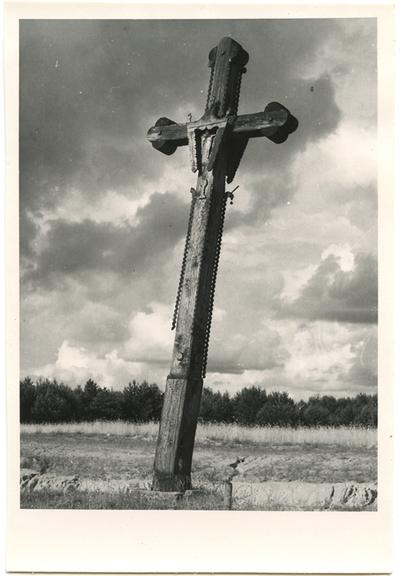Zarasų rajono Gipėnų kaimo medinis kryžius