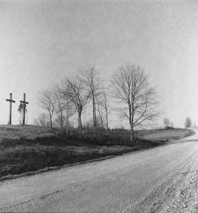 Žernių kaimo (Plungės r.) kryžiai