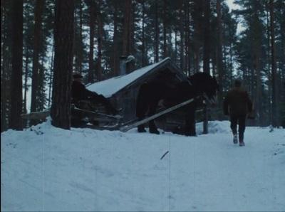 Tømmerkjøring med hest : Hedmark, Aust-Agder 1982