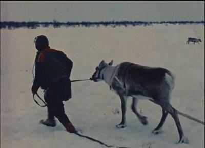 Gæs'sat : Karasjokka 1973