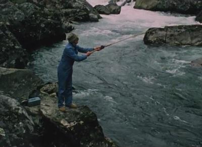 Laksefiske. 4, Vestlandet 1978-80 : stangfiske