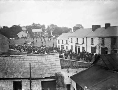 Cattle fair, Ballyboy, Co. Offaly