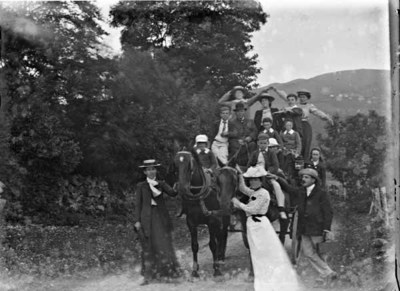 Williamson picnic group with pony and cart, Ireland