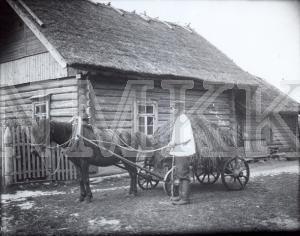 Fotonegatīvs. Kūtsmēslu vešana Ludzas apriņķa Mērdzenes pagasta Vanagu ciemā.