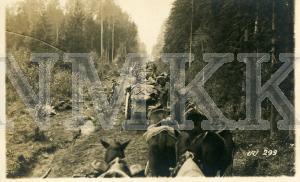 ATKLĀTNE: Vācijas armijas karavīri ar zirgu karavānām, pārvietojoties par meža ceļu Rīgas virzienā, Latvija ; ATKLĀTNE: Vācijas armijas karavīri ar zirgu karavānām, pārvietojoties par meža ceļu Rīgas virzienā, Latvija
