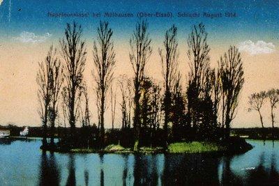 Napoleons Insel bei Mülhausen (Ober-Elsass) Schlacht Auguste 1914