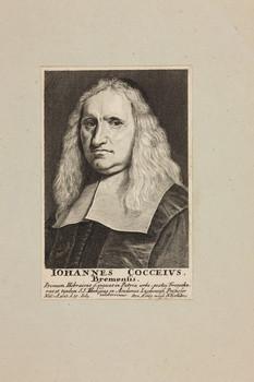 Bildnis des Iohannes Cocceivs
